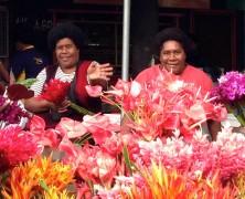 Bula bula in Fiji
