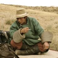 Mongoolse steppe